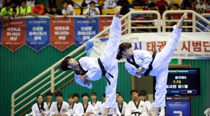 Taekwondo_Gyeonggi_Province_02.jpg