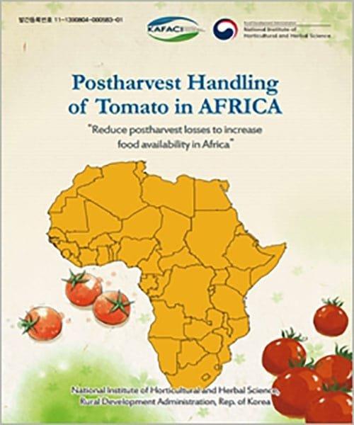Postharvest_Handling_of_Tomatoes_Africa_01.jpg