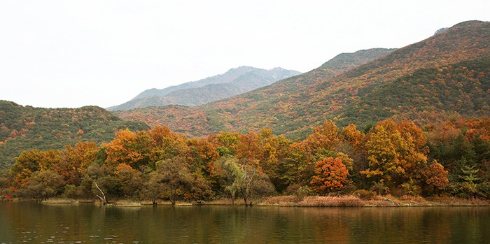 The peak of autumn foliage in Korea this year will begin Oct. 17. People can enjoy the colorful fall foliage at various spots, including some well-known mountain parks. Above is the Sanmagiyet-gil Road (산막이옛길) in Goesan County, Chungcheongbuk-do Province.