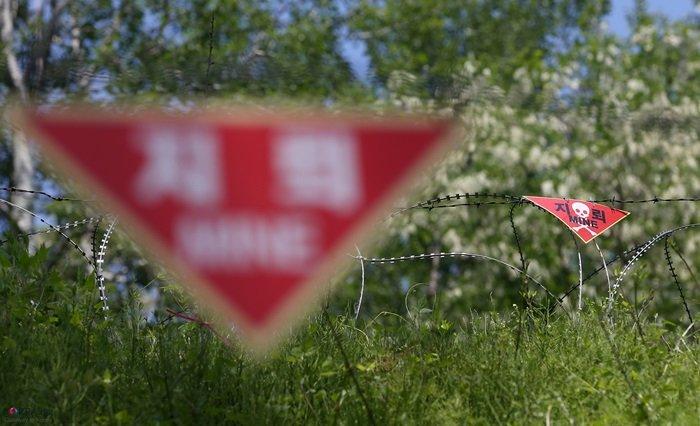 남북은 1일부터 판문점 공동경비구역(JSA)과 강원도 철원 비무장지대(DMZ) 내 지뢰제거 작업에 착수했다. 코리아넷DB