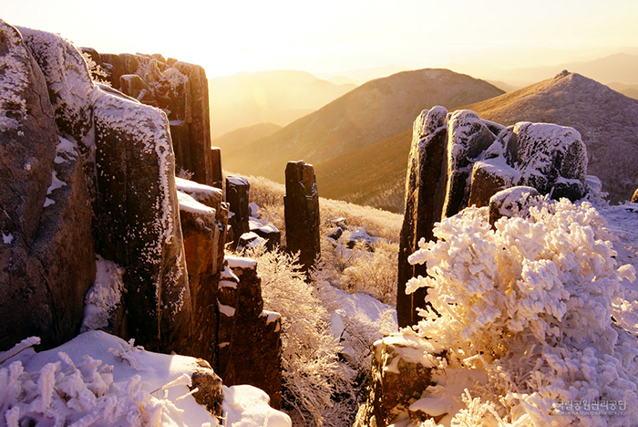 Seoseokdae Rock on Mudeungsan Mountain in Gwangju features the morning sun lighting up snow-covered rock pillars.