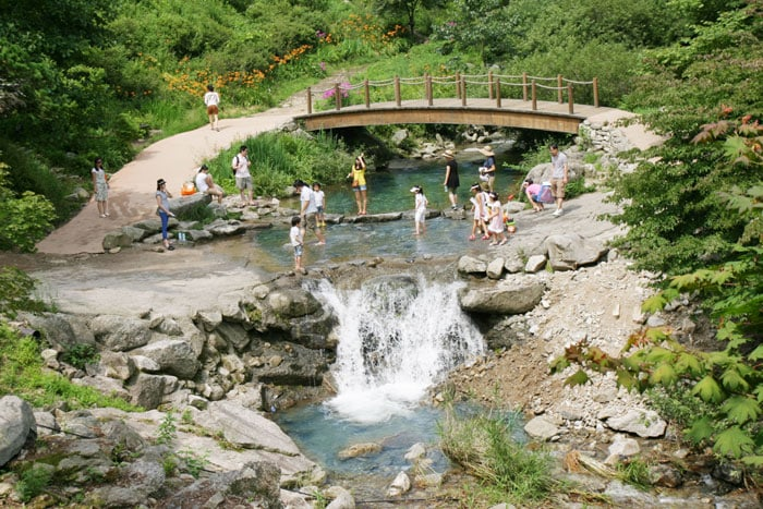 Visitors to the garden enjoy an outing while crossing a small creek.