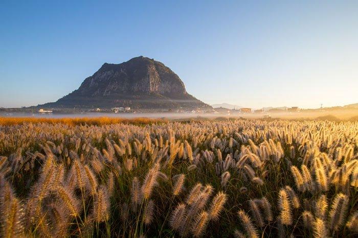 A silver prize winner, 'Morning of Sanbangsan Mountain,' shows Sanbangsan Mountain on Jeju Island against a field of reeds.