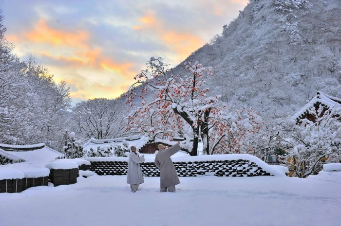 A picture of the snowscape at Naejangsa Temple in Jeongeup, North Jeolla Province, is selected as the winner of a special award for Internet users.
