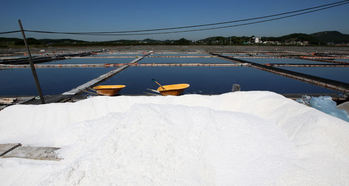Newly produced, white salt from the salt ponds is gathered to one side.