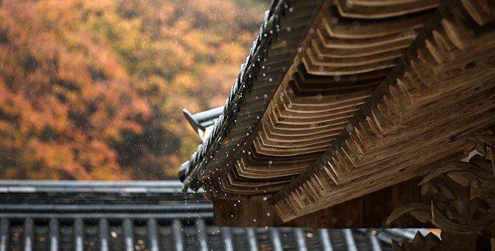 화엄사 처마끝에 지붕을 타고 내려온 빗물이 쉼 없이 떨어지고 있다.