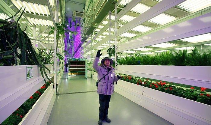 김종백 순천만국가정원 해설사가 25일 LED 조명을 활용해 식물을 재배하는 기술에 대해 설명하고 있다.