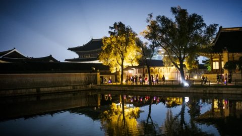 Enjoy summer evenings at Gyeongbokgung Palace